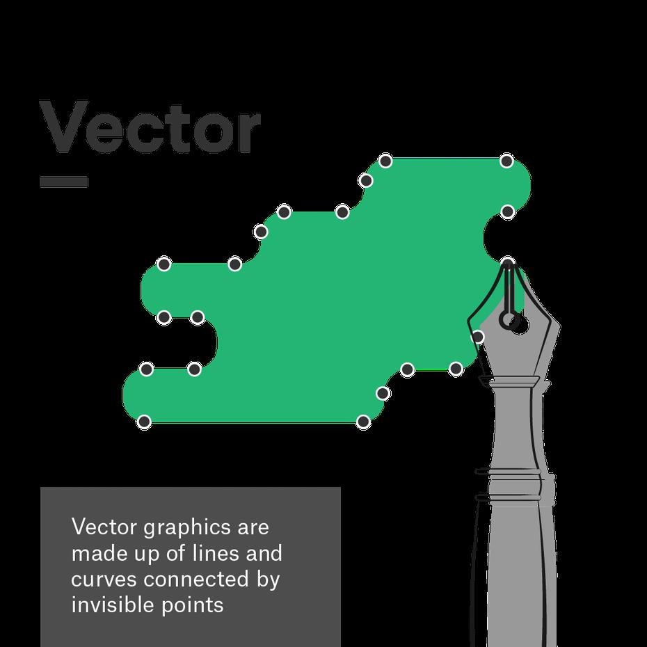 Quel est le format d'un fichier vectoriel?