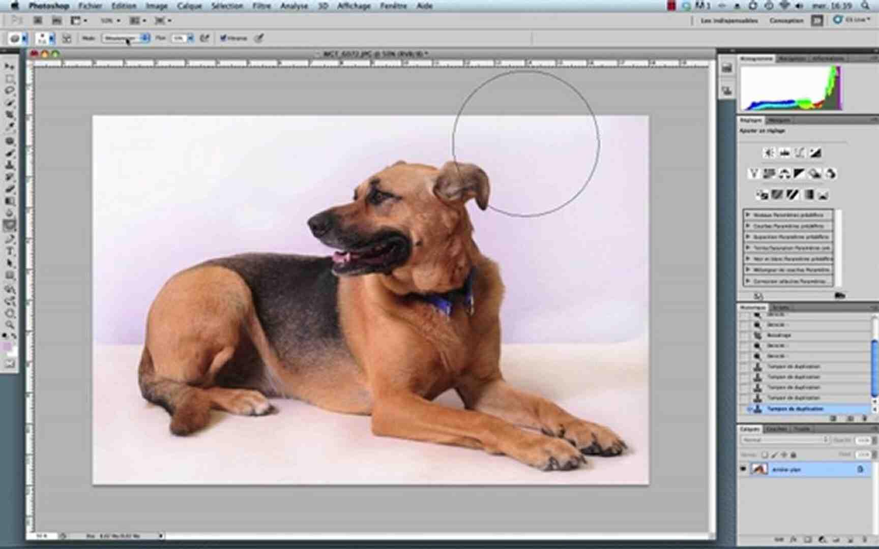 Comment rendre le dos d'une image transparent ?