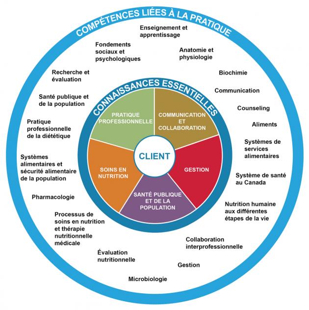 Quels sont les domaines de la psychologie sociale ?